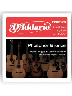 D'Addario EPBB170 Phosphor Bronze Soft (45-100) Acoustic Bass String Set