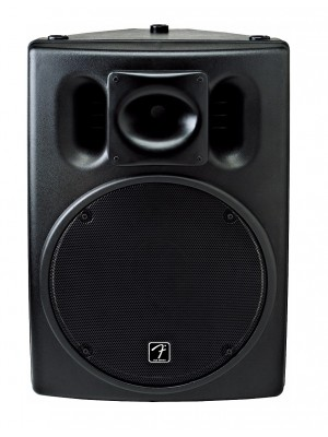 "Fender ACE-15 2-Way 15"" Speaker"